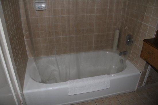 Royal Decameron Montego Beach : Ванная комната