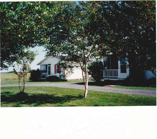 The Birches Housekeeping Cottages: Exterior of standard cottage