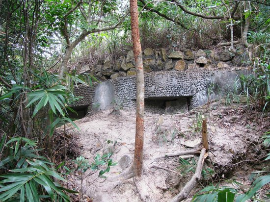 Walk Hong Kong : Another bunker, well concealed