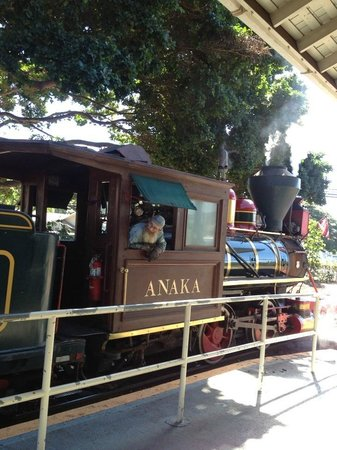 Sugar Cane Train : 機関車