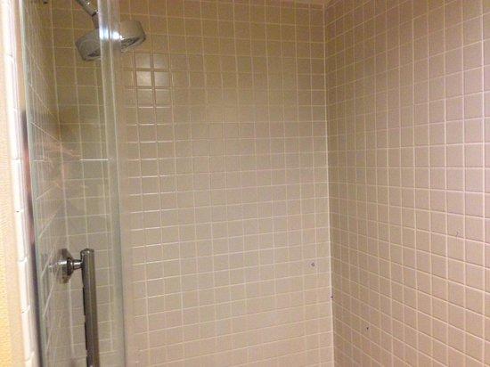 Newport Beach Marriott Bayview : Shower