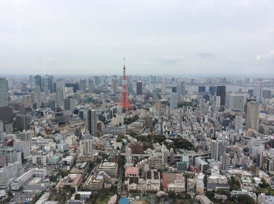 Tokyo City View Observation Deck (Roppongihills) : Tokyo view