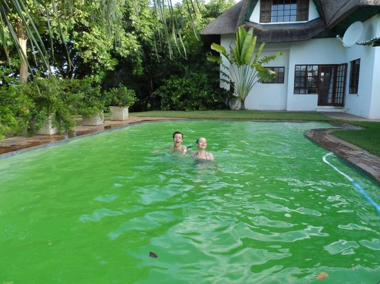 Buhala Lodge: refreshing pool