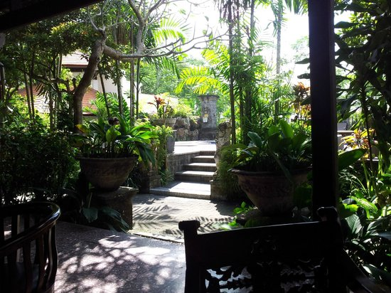 Taman Harum Cottages: some of the beautiful garden area