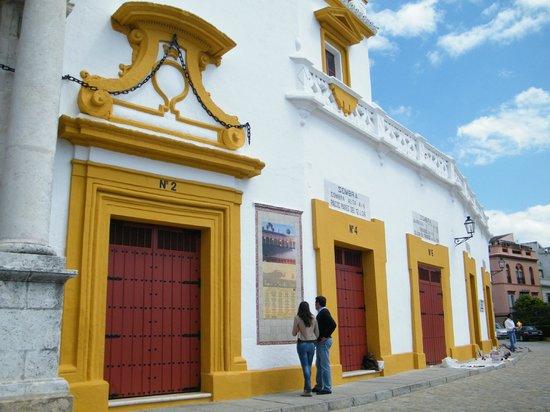 Plaza de Toros de la Maestranza : external view