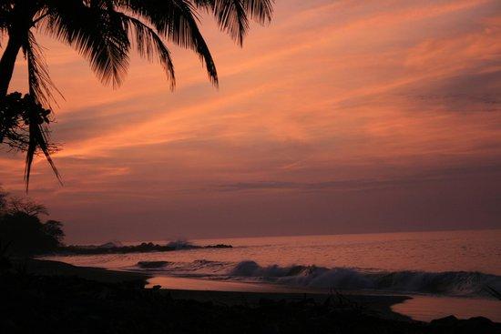 Tango Mar Beachfront Boutique Hotel & Villas: Morning walk