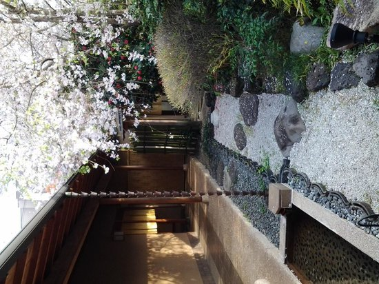 Yoshiharu : 貸し切り風呂前の足湯