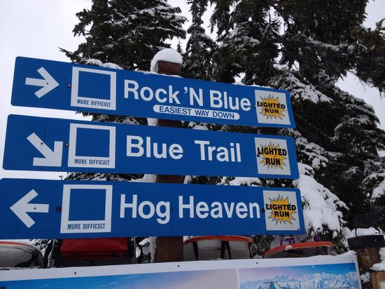 Stevens Pass Ski Area: Fun runs!