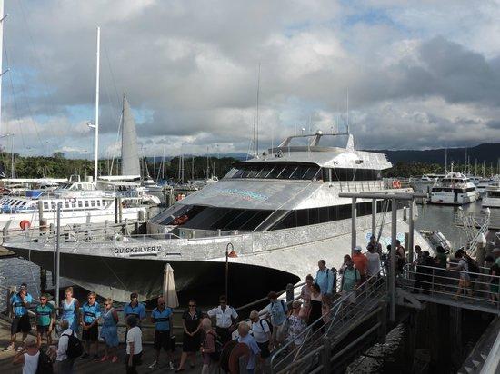 Meridian Port Douglas : Marina