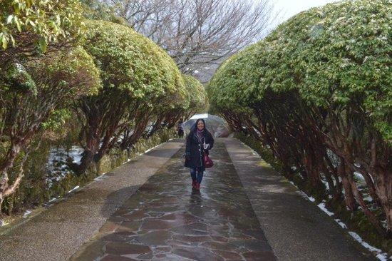 Onshi Hakone Park : Lindo local estava nevando quando fui.