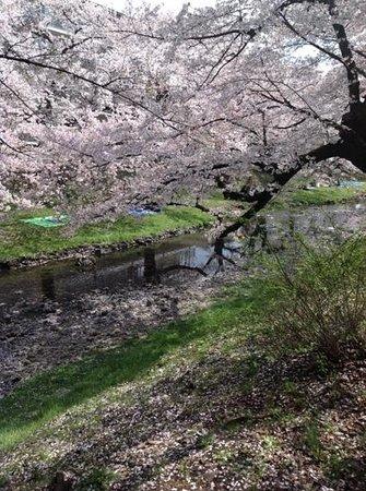 Tachikawa Park
