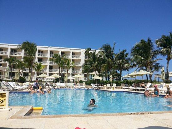 Four Seasons Resort, Palm Beach : Piscina do Hotel