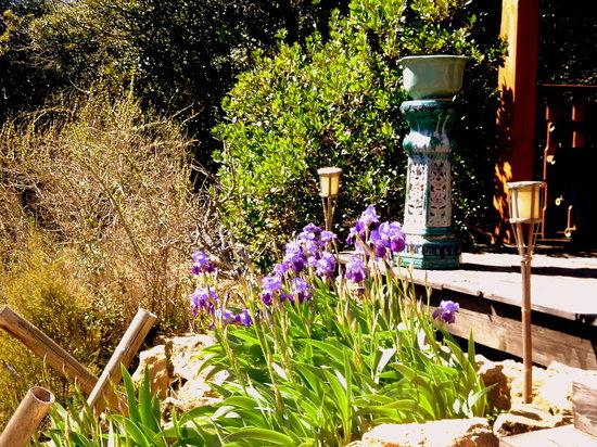 Gites les Casots de Traoucalieres : terrasse du chalet japon