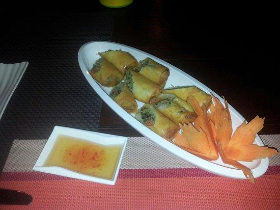 Khaw Glong Thai Restaurant: Spring rolls