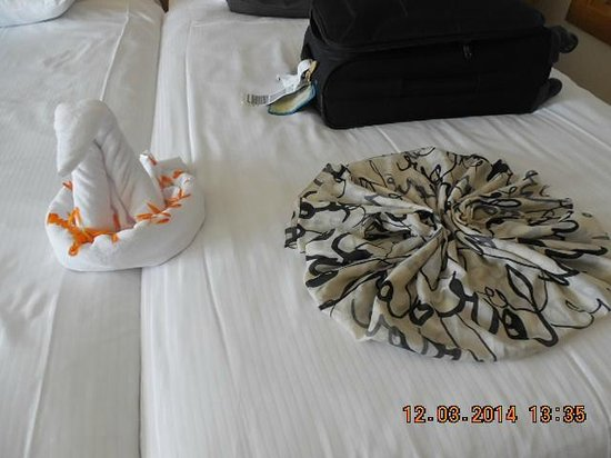 Paloma Oceana Resort: our bed