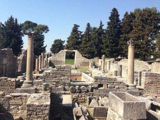 Ruins of the Solin Amphitheatre : Salona