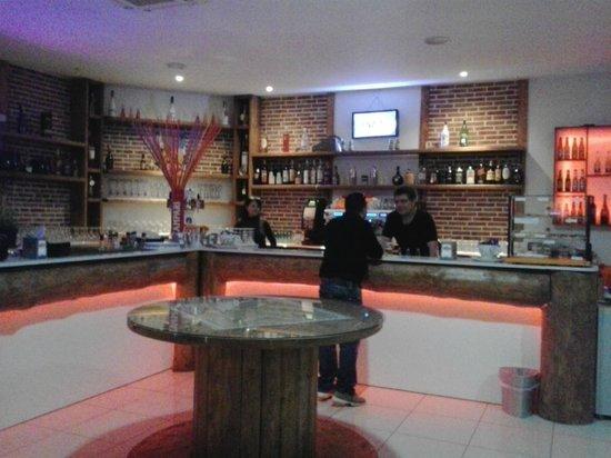 Iltulipanonero pub: Zona bar