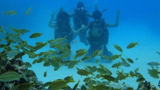 Paradise Dive Shop : con el segundo instuctor