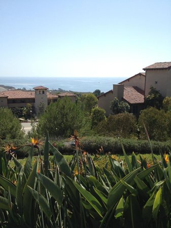 Marriott's Newport Coast Villas: View