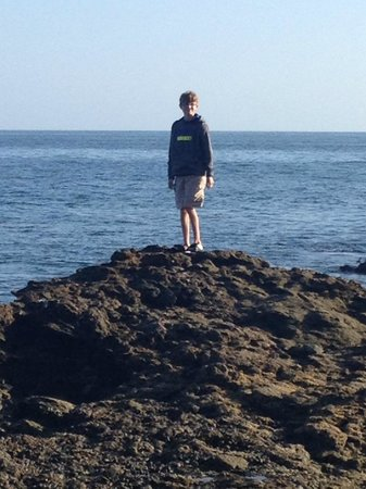 Marriott's Newport Coast Villas : Tide Pools - Laguna Beach