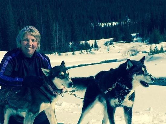 Snowy Owl Sled Dog Tours: My beautiful lead dogs Apache and Peach