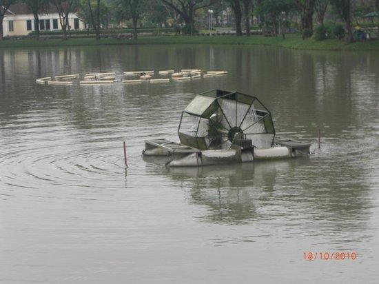 Lake in Lumpini Park