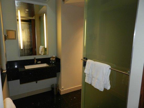 Radisson Blu Aqua Hotel: SDB