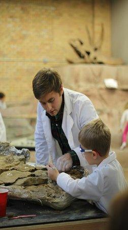 Duluth Children's Museum : Dinosaur Dig Site