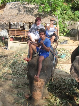 Patara Elephant Farm - Private Tours : катание на слоне