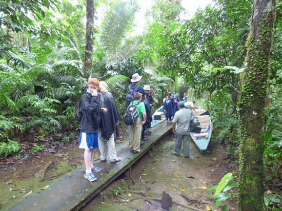 La Selva Amazon Ecolodge : Walking toward the canoe to get there