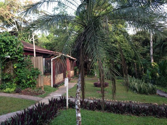 duPlooy's Jungle Lodge: Grounds
