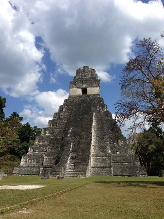 duPlooy's Jungle Lodge : Tikal
