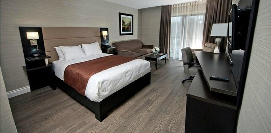 Ramada Ottawa On The Rideau : Queen bed + Pull out couch