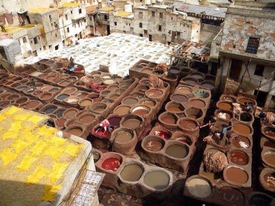 Morocco Private Tours & Excursions: Fez
