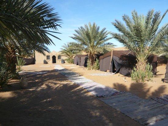 Desert Dream: le bivouac