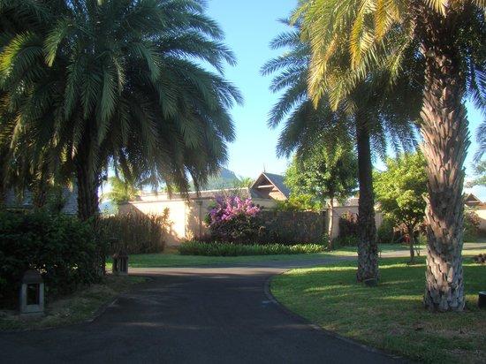 Maradiva Villas Resort and Spa : jardin interieur