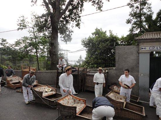 Monte Palace Tropical Garden : Традиция Мадейры -катание на санях