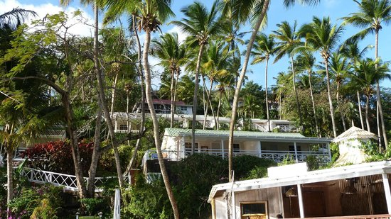 Marigot Beach Club and Dive Resort: Main cottages