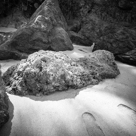 Hyatt Residence Club Dorado, Hacienda del Mar: Rocks