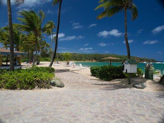 Hyatt Hacienda Del Mar: Center of beach looking west