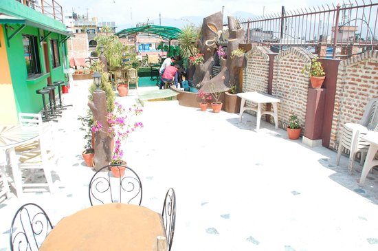 Hotel Family Home : Roof top garden at sunny day