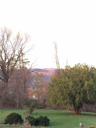 Killahevlin : Morning view from Jade Room