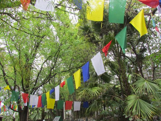 Norling House: Prayer flags greet you as you arrive.