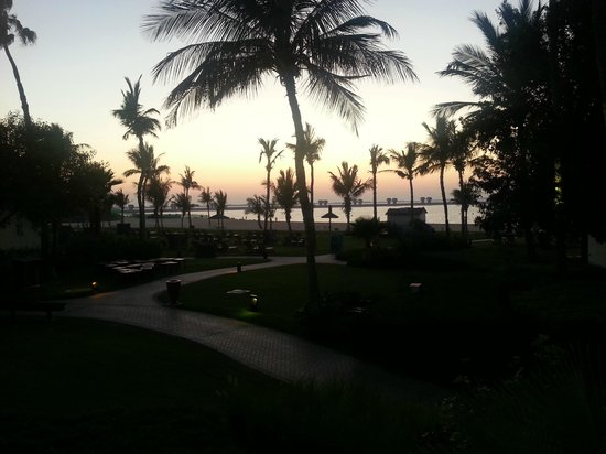 JA Palm Tree Court: hotel grounds