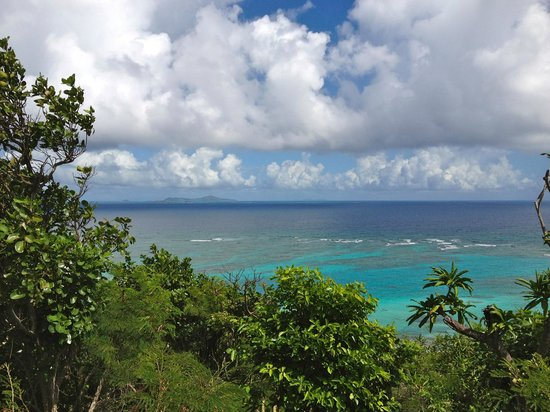 Petit St. Vincent Resort : A view from Cottage #4