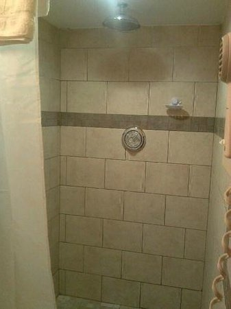 Northwood Inn and Suites : Shower