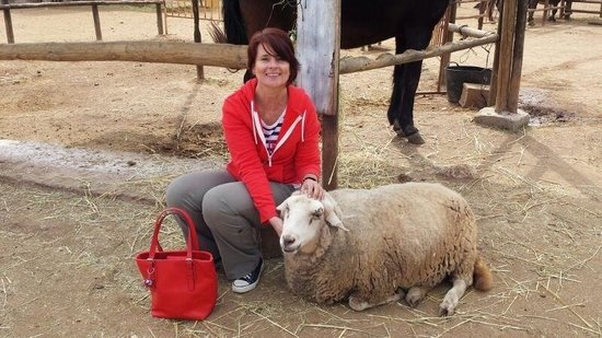 Nerja Donkey Sanctuary : I adopted her