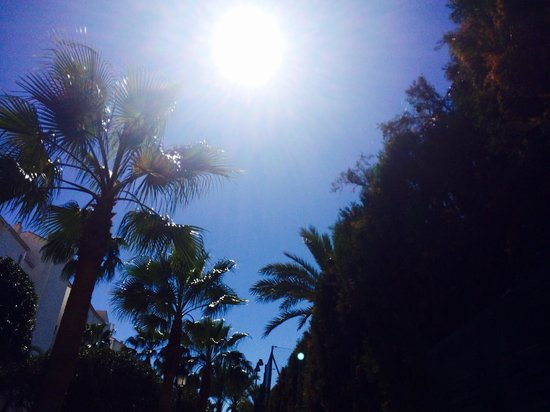 PYR Marbella Hotel: Lying on sun lounger at poolside bliss