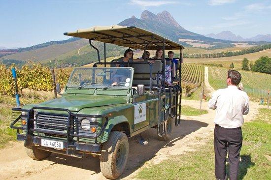 Warwick Wine Estate: Safari Tour