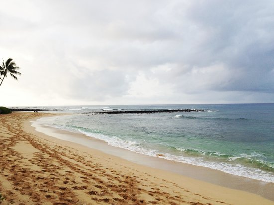 Kiahuna Plantation Resort : The beach